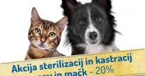 Akcija sterilizacij in kastracij psov in mačk! -20%